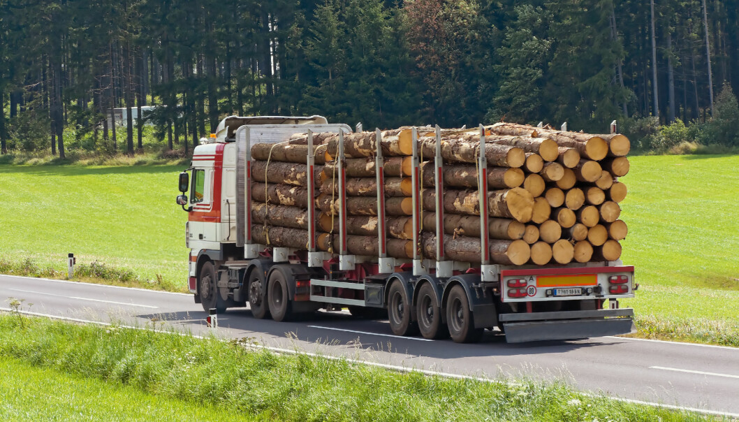 Transport of logs on a truck