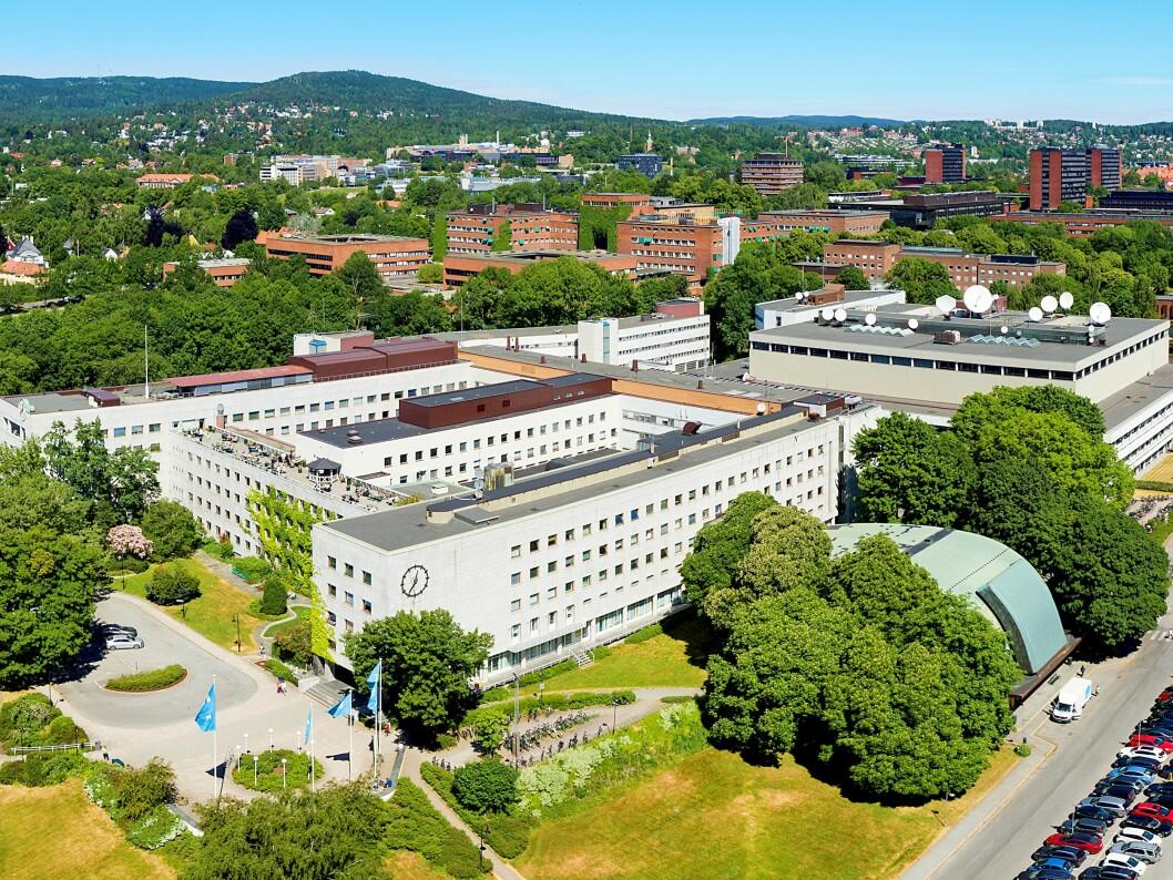NRK er i gang med ansettelsen av ny informasjonssikkerhetsansvarlig (foto: Gregard Palotta, NRK).